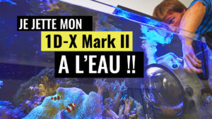 VLOG-BATZ-SUR-MER-TEST-CAISSON-AQUATECH-DELPHIN-1DX-MARK-II
